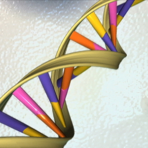 Study: Most respond well to genetic testing results